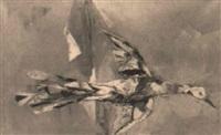 pájaro by miquel ibarz