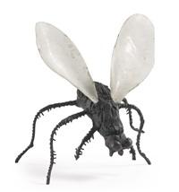 untitled (fly) by will ryman