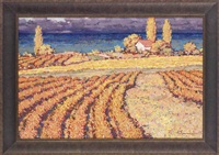 vineyards by sergei patikovski