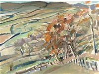 yorkshire, nidderdale, autumn by michael honnor