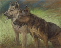 two german shepherds in a field by fannie moody