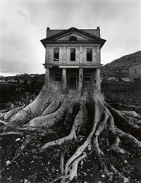 untitled (house with roots) by jerry uelsmann