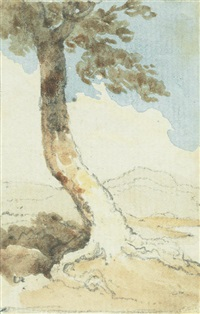 study of a tree by george chinnery