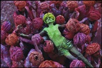 holi festival, rajasthan, india by steve mccurry