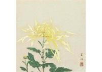 flower by kayo yamaguchi