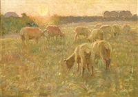 sheep at sunset by charles walter simpson