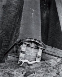 elizabeth under the manhattan bridge, new york by spencer tunick