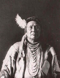 chief joseph of the nez perces by wells m. sawyer