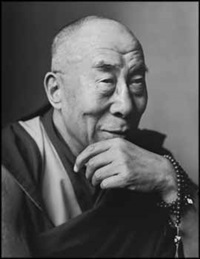 dalai lama, washington, dc by mark seliger