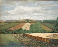 cornfield, balrothery by alex mckenna
