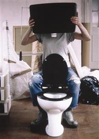 human toilet i by sarah lucas
