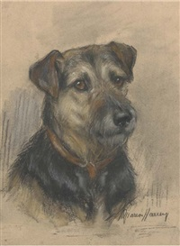the head of a terrier by marion rodger hamilton harvey
