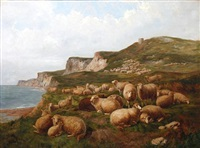 sheep on the cliff tops by l.j. graham-clarke