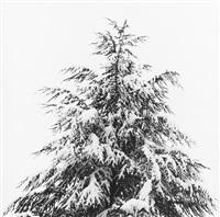 merry christmas by robert mapplethorpe