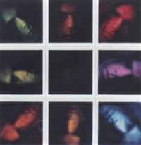 9 polaroids by peter campus