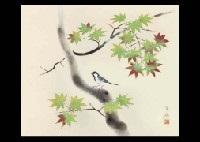 green maple by kayo yamaguchi