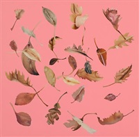 leaf, pink (study) by jonathan yeo