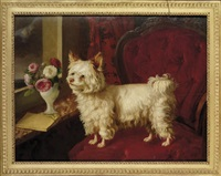 a dog on a red velvet fauteuil by henri baert