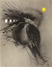 kookaburra by brett whiteley
