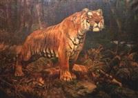 tiger ambush by john trivett nettleship