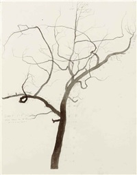 untitled (scale drawing for palimpsest) by roxy paine
