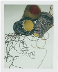 filpucci yarn by andy warhol