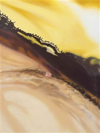 honeyed by marilyn minter