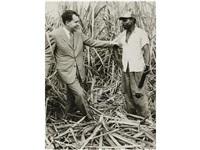 nicolas de visita en una plantación de azúcar en cuba by constantino arias