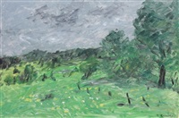 laurentian meadow under grey sky by william goodridge roberts