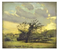 july evening (small tree with missing limb) by laurence hofmann
