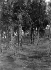woods by harry macgregor