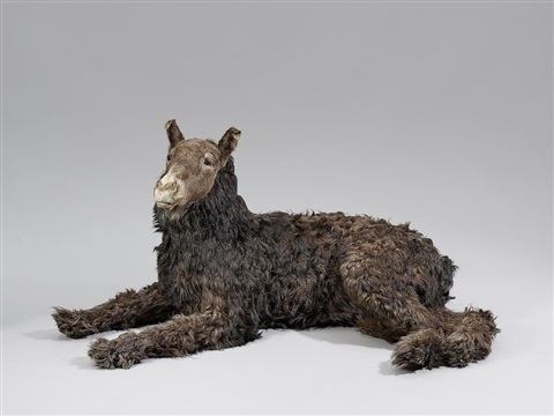 fohlenhund aus misfit by thomas grünfeld