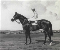 reform (with jockey a. breasley up), & london  cry by richard anscomb