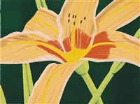 day lily 1 by alex katz
