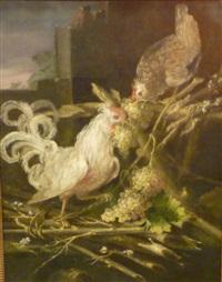 coq et poule by melchior de hondecoeter