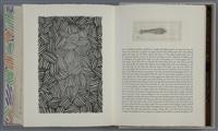 samuel beckett. fizzles (foirades) (portfolio of 33) by jasper johns