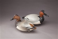 canvasback (pair) by lemuel t. ward