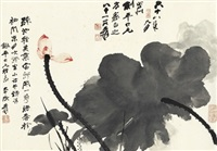 含苞芙蕖图 (blooming lotus) by zhang daqian