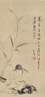 苇岸鹈鹕 by pu ru