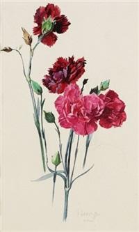 nelke (+ iris; 2 works) by hermann haase