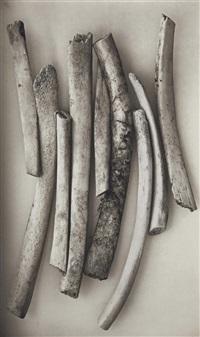 bird bones (sweden) by irving penn