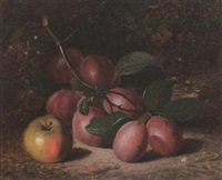 plums and an apple, on a mossy bank by charles archer