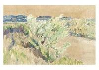 landscape by ryoka kawakami