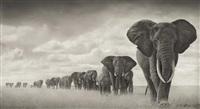 elephants walking through grass, amboseli by nick brandt
