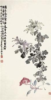 菊花 by xiao junxian