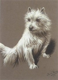 a cairn terrier by fannie moody