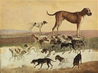 study of dogs by jacques-laurent agasse