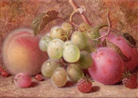 grapes, plums, raspberries, and a peach, on a mossy bank by charles archer