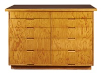 cabinet by richard neutra