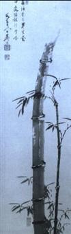 bamboo by tenge